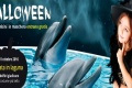 Halloween a Oltremare